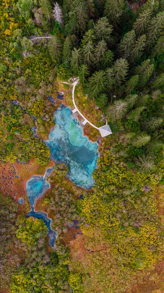Zelenci Natural Reserve in Slovenia. Aerial Drone View at Fall C
