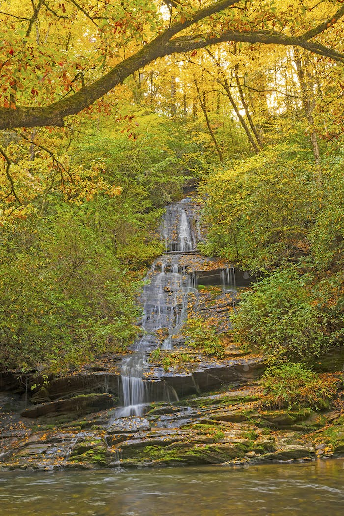 Hidden Cascade in the Fall Forest