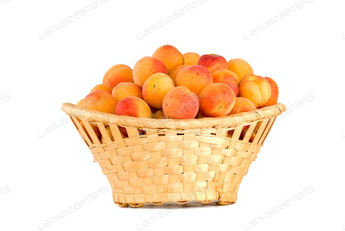 Wicker basket filled with apricots