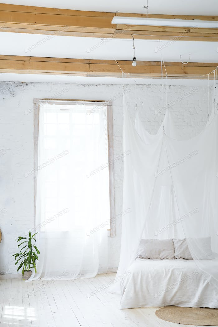 interior with a green tree and curtain on wooden window. Idea of a white empty scandinavian