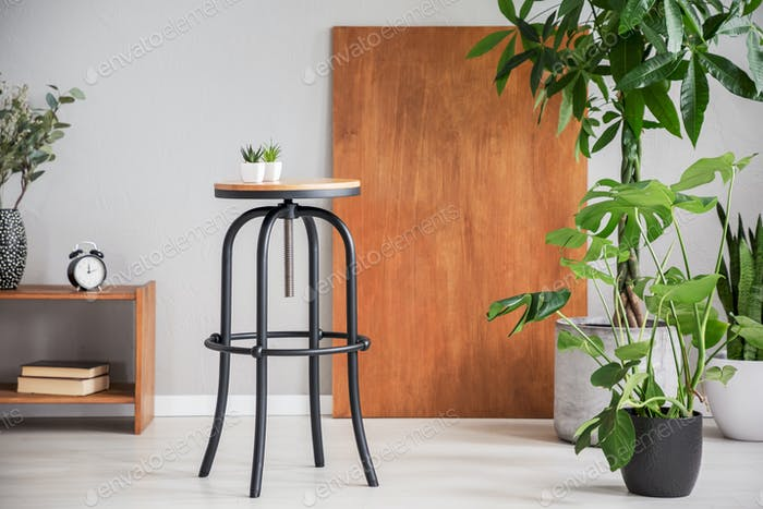 Black table between wooden cabinet and plants in grey living roo