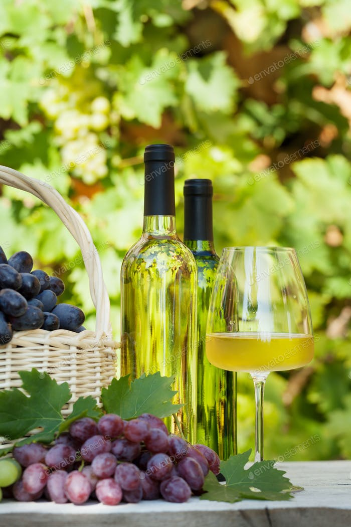 Colorful grapes and white wine