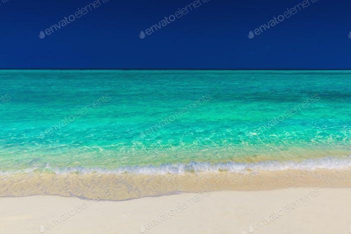 Vibrant green tropical sea, sand and blue sky