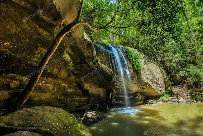Serenity Falls and swimming hole in Buderim Forest Park, Sunshin