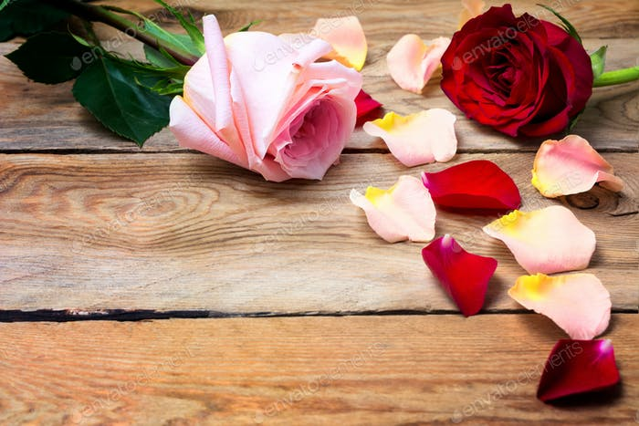 Valentine's Day background with pink and red roses, copy space.