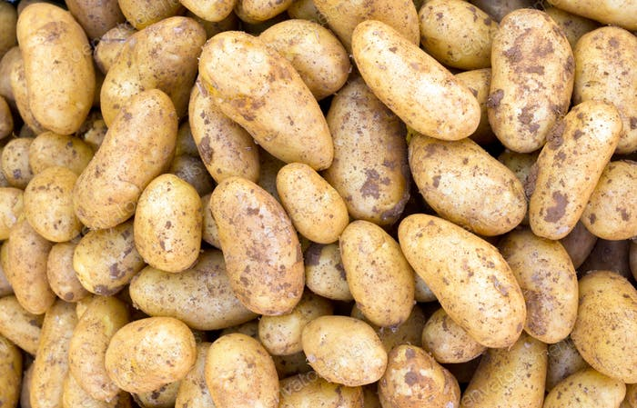 Potatoe background