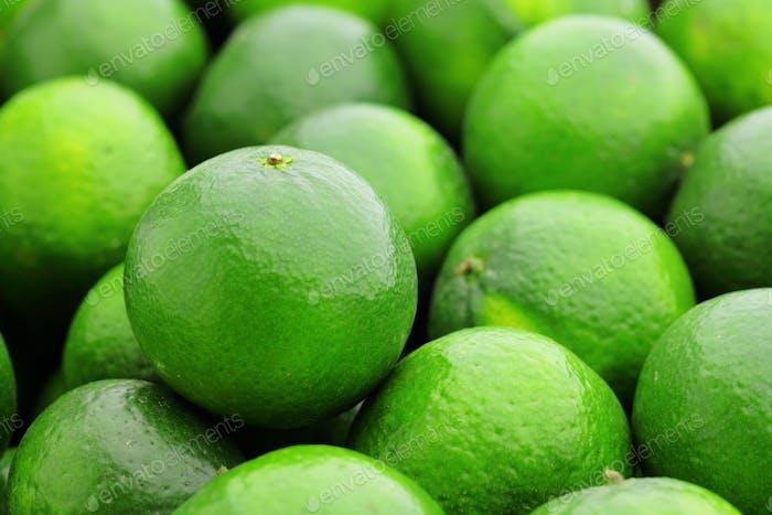 Limette Zitrusfrüchte
