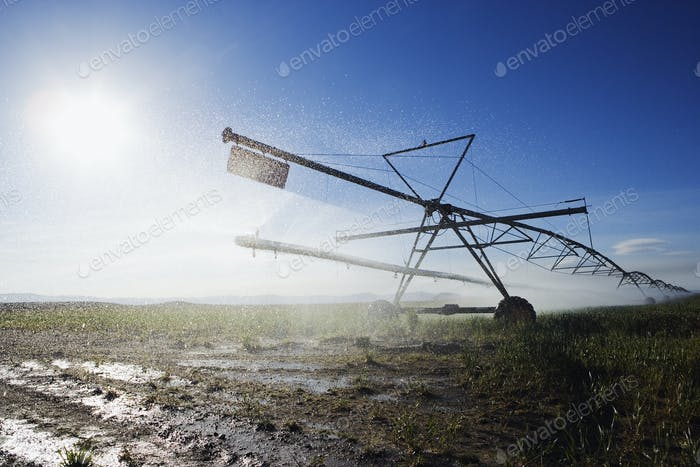 Irrigation Sprinkler in Field