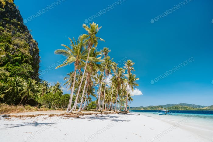 El Nido, Palawan, Philippines. Beautiful Ipil beach with coconut palm trees, sandy beach and blue