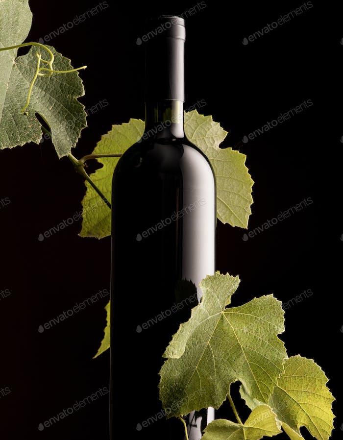 Rew wine bottle with vine branch