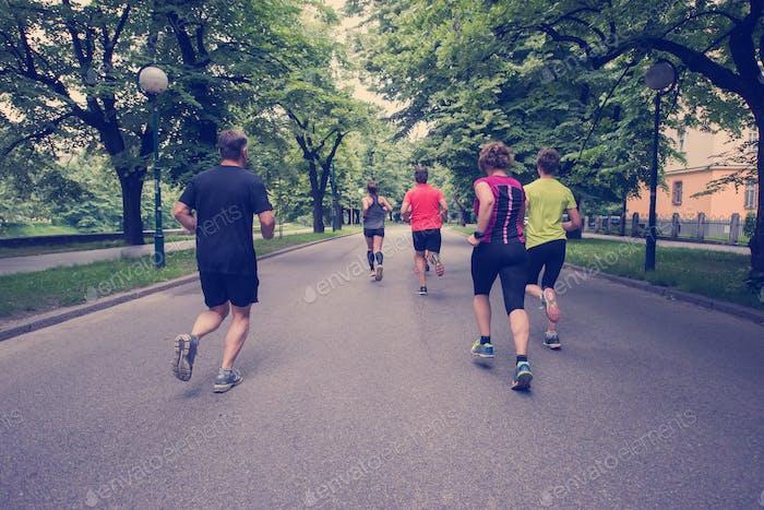 Equipo de corredores en el entrenamiento matutino