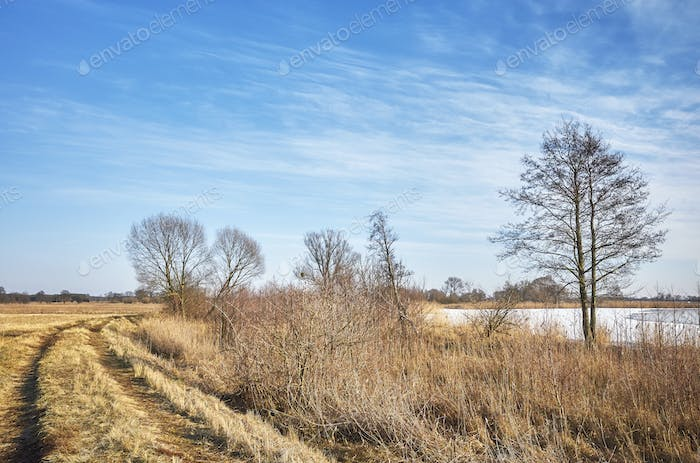 Rural winter landscape with a walking path