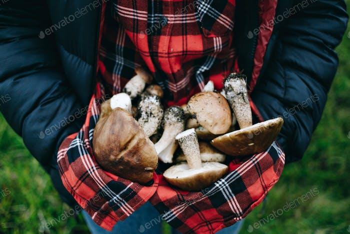 Woman hold fresh picked wild mushrooms