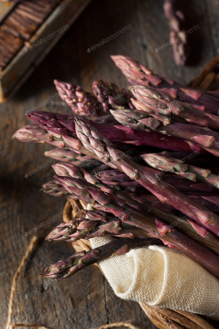 Raw Bio Purple Spargel Speere