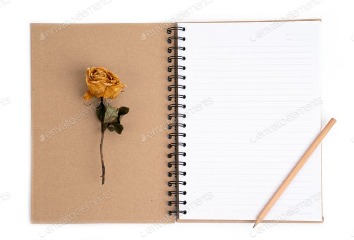 dried rose flower with pencil on notebook