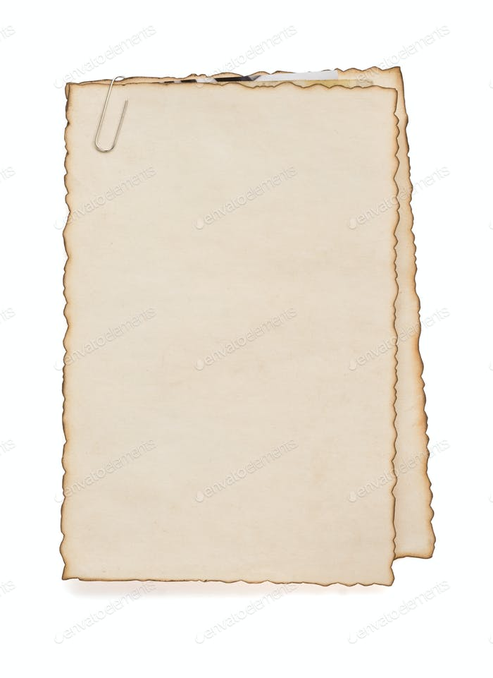 paper vintage parchment on white