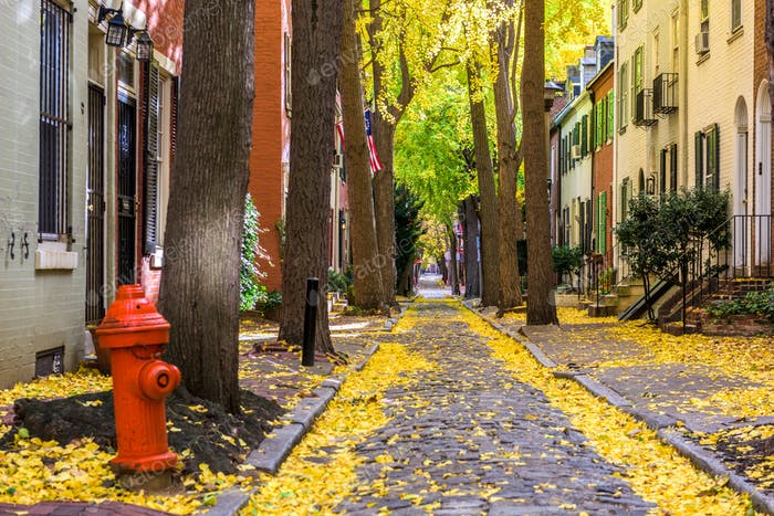Autumn alleyway in Philadelphia, Pennsylvania, USA