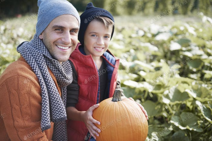 Father and son in the pumpkin field