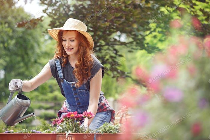 Frau Gartenarbeit am sonnigen Tag