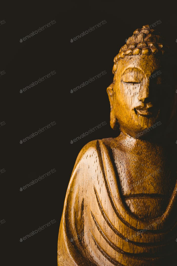 Wooden buddha statue shot in studio