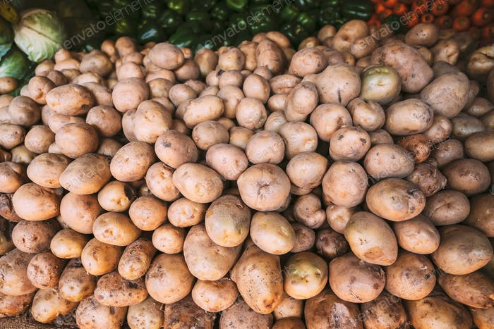 Bio Braunkartoffeln auf dem lokalen landwirtschaftlichen Gemüsemarkt. Herbst Erntekartoffeln Hintergrund
