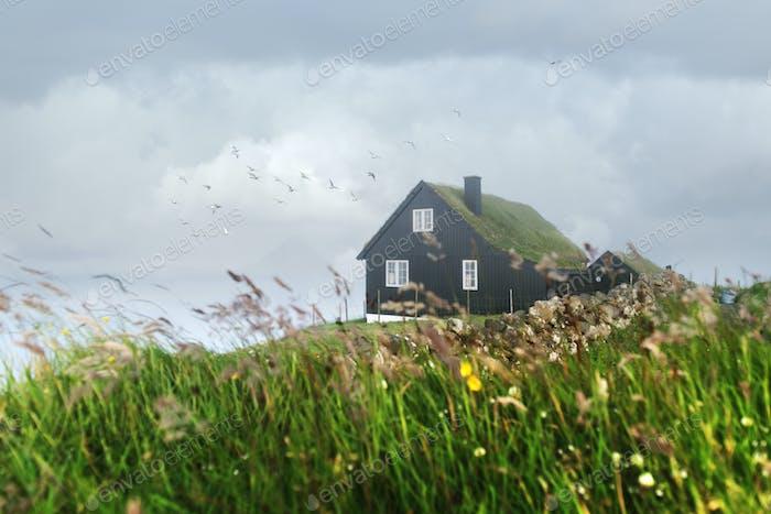Nebeliger Morgenblick auf ein Haus mit typischem Grasdach