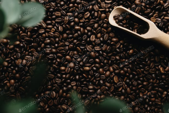 Background with array of dry coffee beans