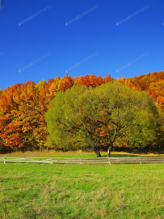 Country scenery on late autumn season.