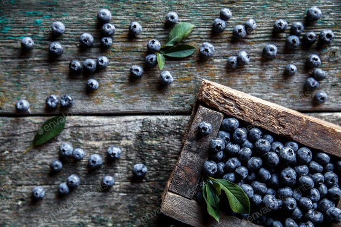 Freshly picked blueberries are in a wooden box