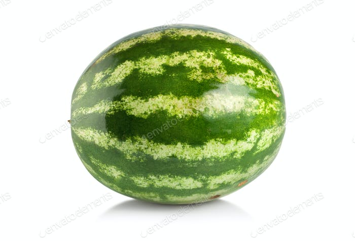 Ripe large watermelon isolated
