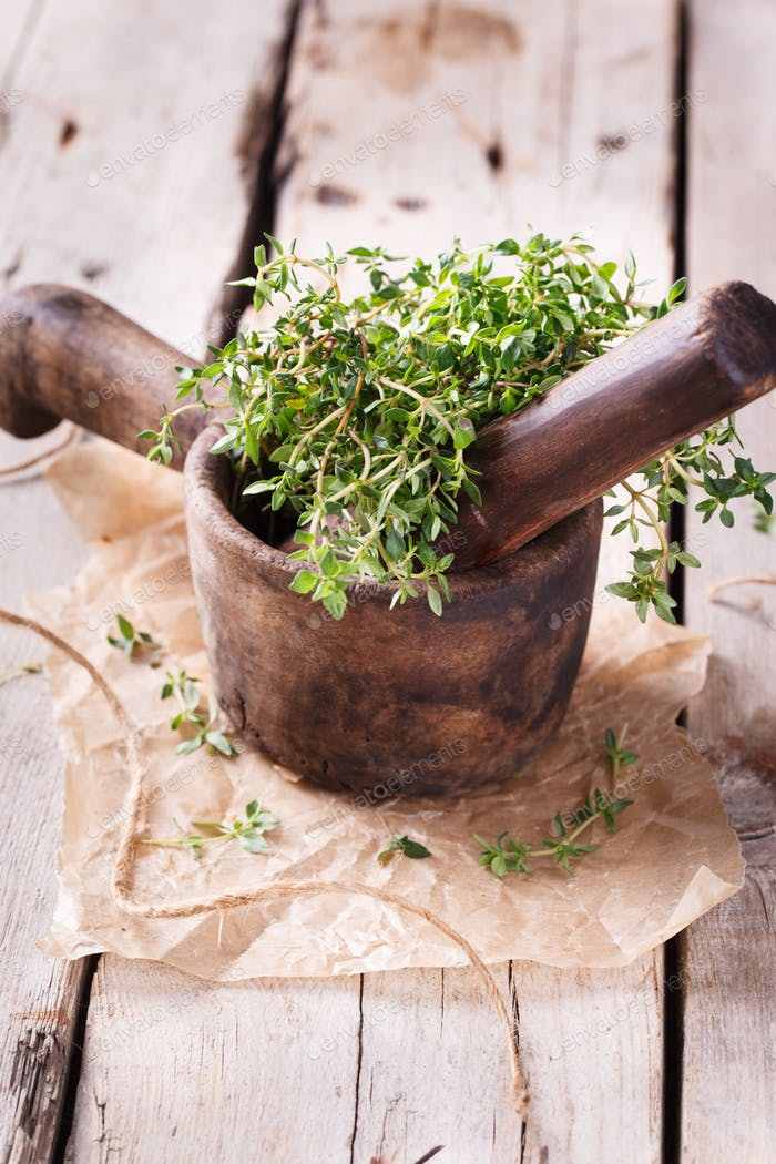 Wooden mortar with thyme. Vintage mortar