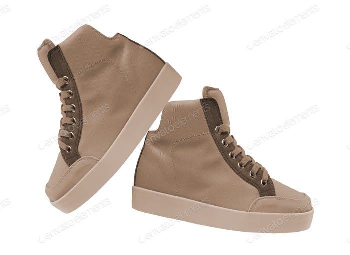 Male shoes isolated