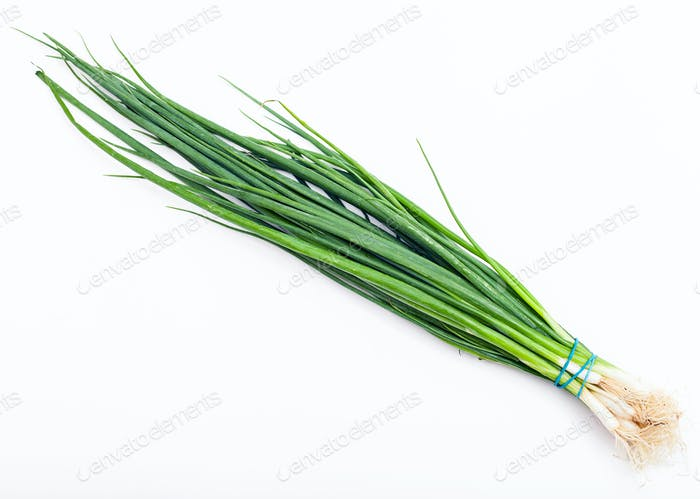 bunch of fresh cut green chives on white