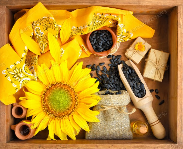 Beautiful composition with sunflower, oil and seeds in bag on wo