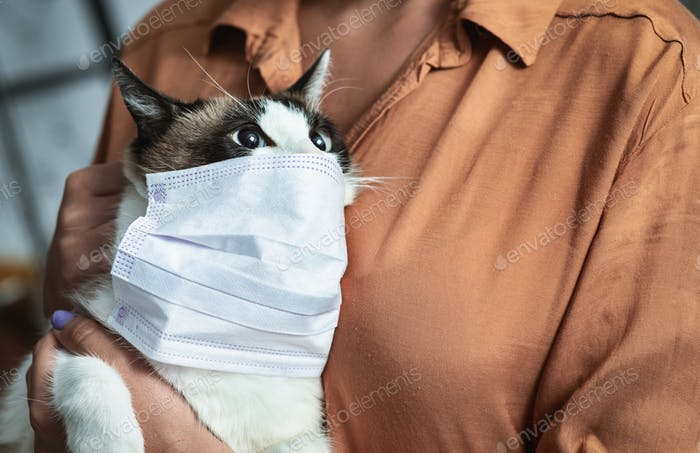 Portrait of girl and cat in quarantine wearing mask