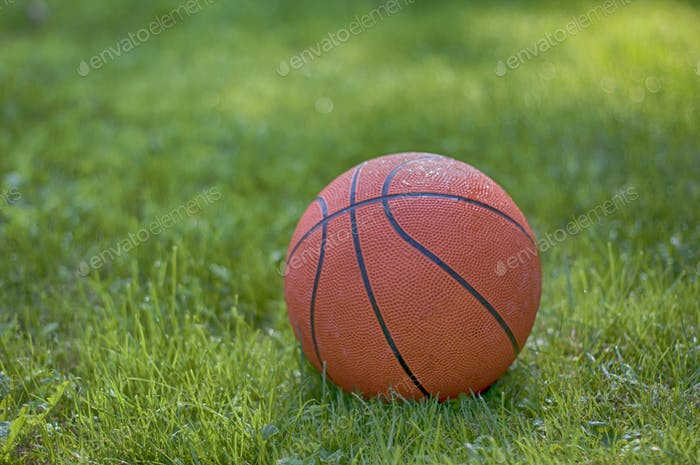 basketball on grass