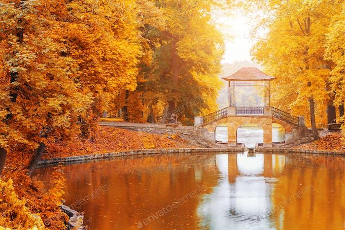 Wooden bridge in the autumn park, Japan autumn season, Kyoto.