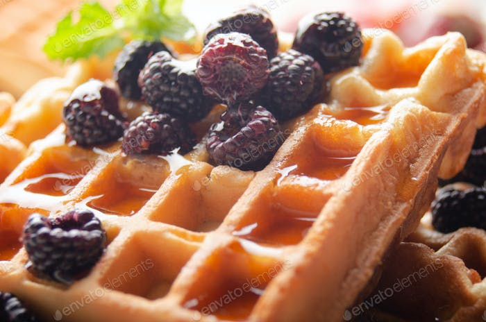 Homemade crispy Belgian waffles served with blackberries and honey closeup