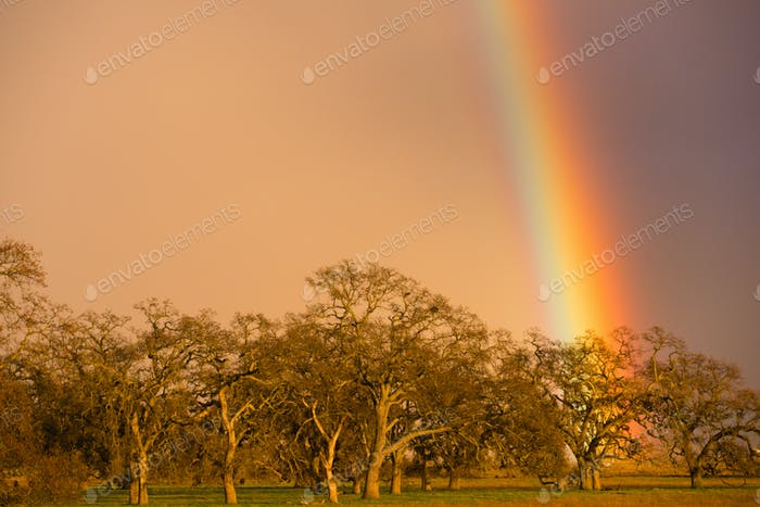 Dramatic Rainbow California Valley Landscape Rain Falling