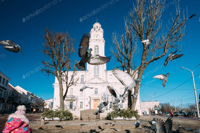 Vitebsk, Belarus. Pigeons Taking Off On Background Of Old Town H