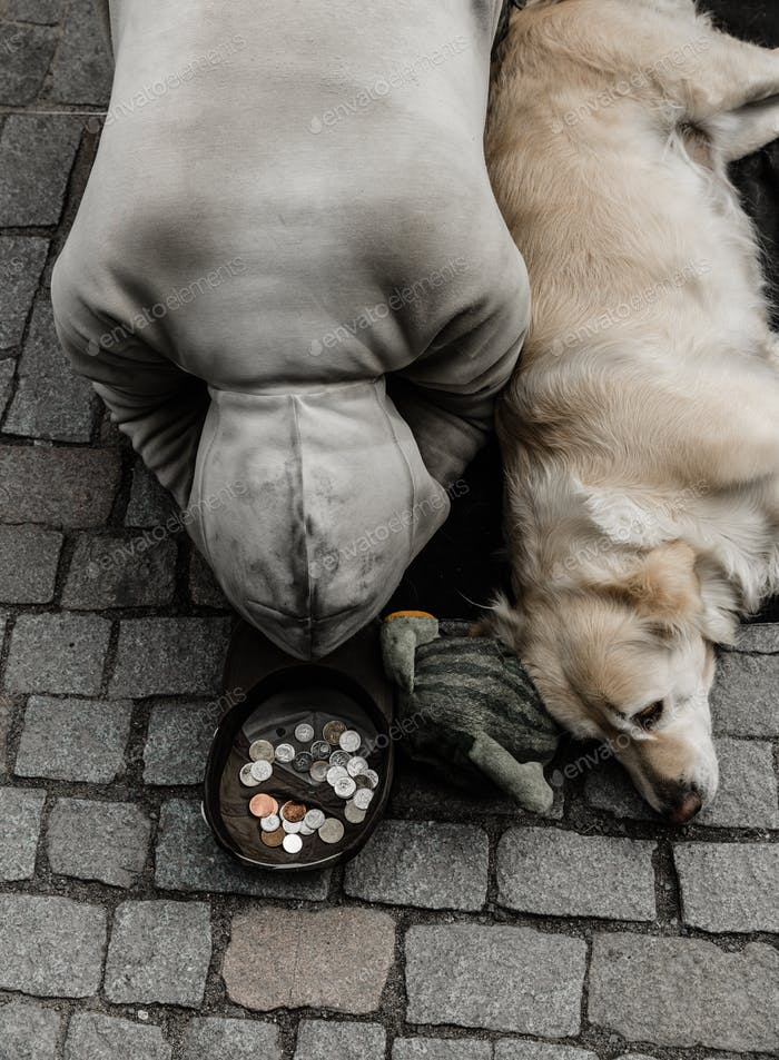 Beggar with dog begging for alms, European city