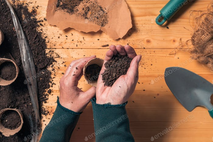 Gardener filling biodegradable soil pot container