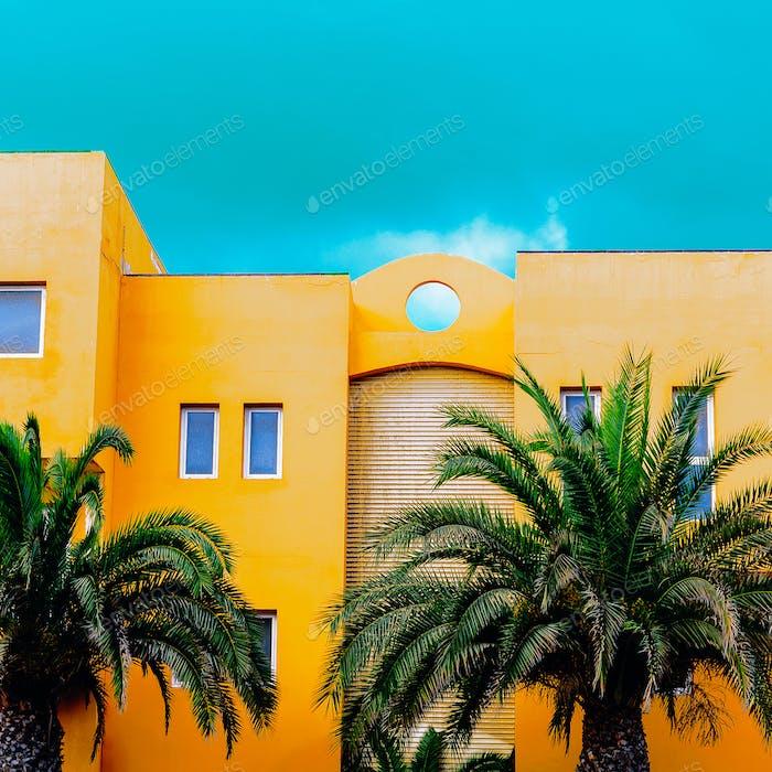 palm fashion urban set