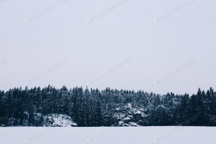 Winter whiteout on a lake with pine trees on a hill