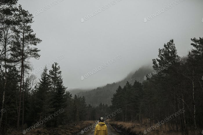 Rear view of a woman in a yellow windbreaker standing in a misty forest