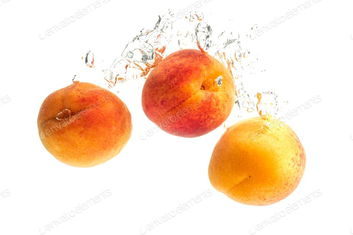 Fresh Apricots with water splash isolated over white background