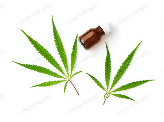 Marijuana cannabis leaves