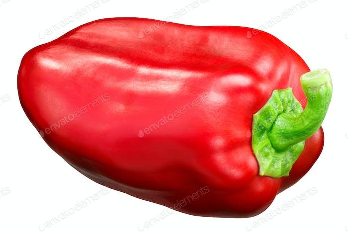 Red bell pepper c. annuum, paths