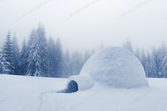 Echtes Schnee-Iglu Haus in den Winterbergen