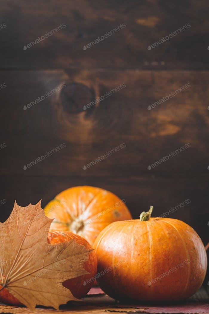 Kleine Kürbisse und getrocknete Herbstblätter Stillleben. Herbsthintergrund.